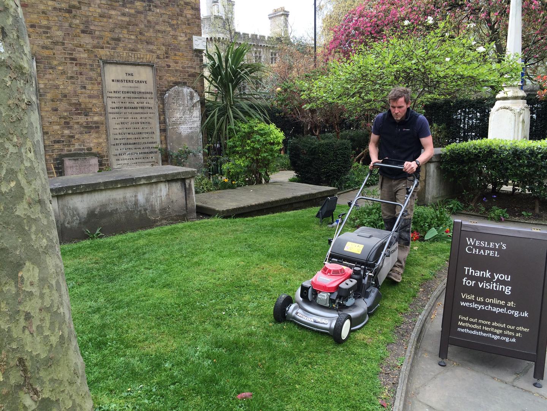 Lawn care bark blog for Garden maintenance